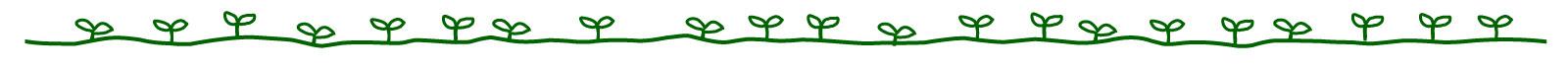 木の芽ライン